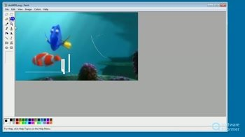 Paint Xp 1 5 Download Free